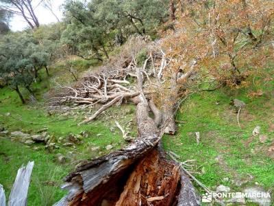 Garganta de Picadas - Vía Verde del Alberche; viajes culturales;material trekking